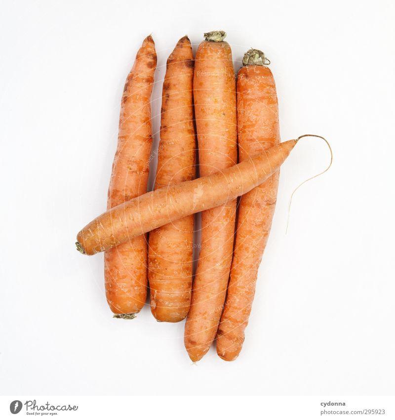 Unser täglich Möhrchen Leben Freiheit Gesunde Ernährung Gesundheit natürlich orange Lebensmittel Ordnung Energie frisch Ernährung genießen Kochen & Garen & Backen Ziffern & Zahlen einzigartig Gemüse