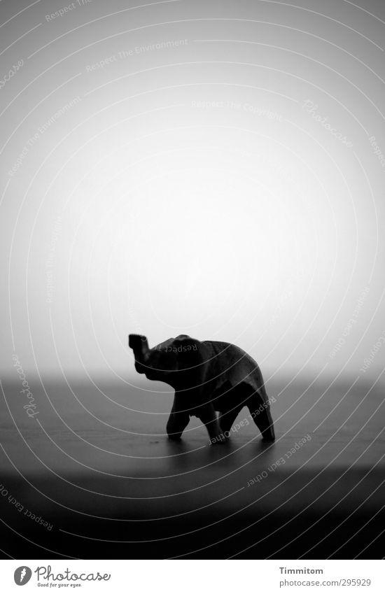 Jugendfoto   Die Welt und alles. Tier schwarz Gefühle Holz grau träumen einfach Abenteuer Elefant Miniatur Schatten Holzfigur
