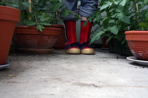 where she found her passion for gardening Mensch grün Pflanze rot Blatt feminin Schuhe Zufriedenheit Wachstum Jeanshose Balkon Stiefel Gartenarbeit Blumentopf