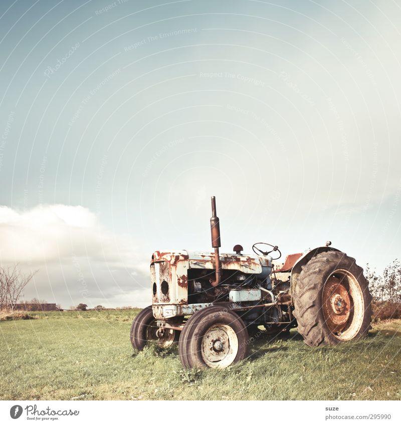 Land Rover Himmel Natur alt Wolken Umwelt Wiese hell dreckig Schönes Wetter kaputt Vergänglichkeit Landwirtschaft Bauernhof Rost Fahrzeug Gerät