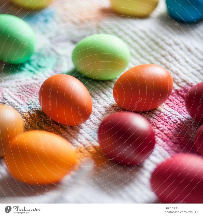 Ei, ist das schön Farbstoff Kreativität mehrfarbig streichen färben Ostern Osterei Handtuch viele Hühnerei Vorbereitung Farbfoto Detailaufnahme Menschenleer Tag