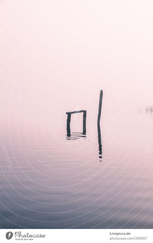 immer noch Seepark Himmel Natur blau Wasser Pflanze Sonne Landschaft Wolken ruhig Umwelt Herbst Holz See rosa Wetter Wellen