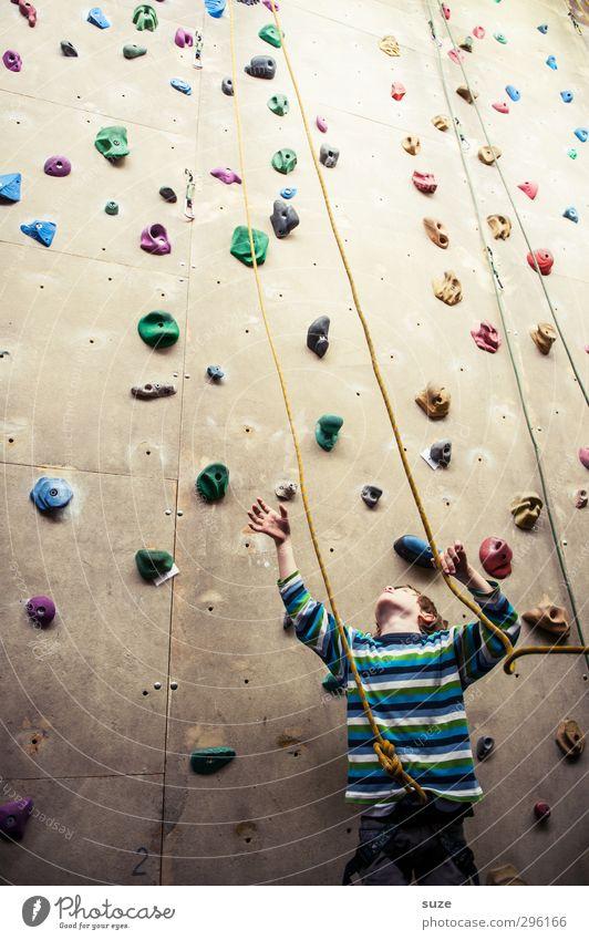 In den Seilen Lifestyle Freude Freizeit & Hobby Sport Klettern Bergsteigen Mensch Kind Junge 1 3-8 Jahre Kindheit Mauer Wand Kunststoff Fitness hoch klein