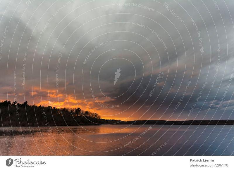 Nightfall Umwelt Natur Landschaft Urelemente Feuer Luft Wasser Erde Himmel Zufriedenheit Farbfoto Außenaufnahme Tag Licht Kontrast Sonnenlicht Sonnenaufgang