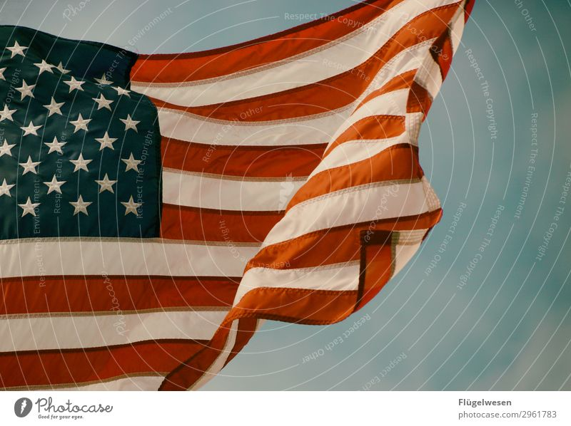 God bless America Amerika Amerikaner USA Stars and Stripes Fahne Nationalitäten u. Ethnien Patriotismus Lokalpatriotismus Erfolg Trump Tower Präsident Stoff