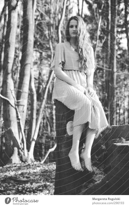 baumstamm feminin Junge Frau Jugendliche Erwachsene 1 Mensch 18-30 Jahre Umwelt Natur Baum Sträucher Wiese Wald Kleid Haare & Frisuren Blick sitzen Wachstum