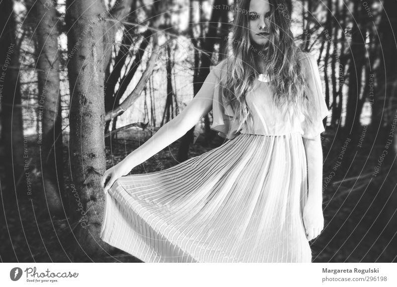 waldtanz Mensch Frau Natur Jugendliche schön Baum Junge Frau Wald Erwachsene Umwelt Haare & Frisuren 18-30 Jahre Luft elegant frei verrückt