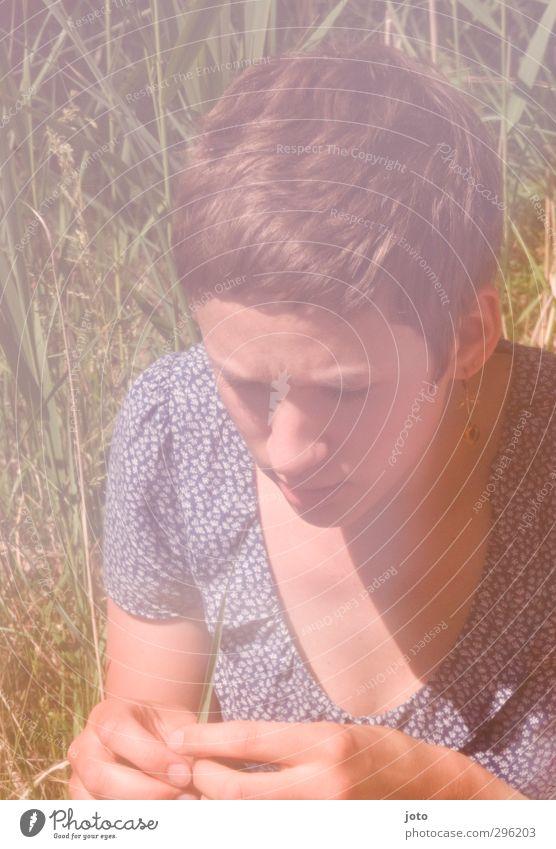 grasgeflüster Jugendliche Sommer Sonne ruhig Erholung Junge Frau feminin Gras sitzen Freizeit & Hobby Zufriedenheit Sträucher Warmherzigkeit beobachten
