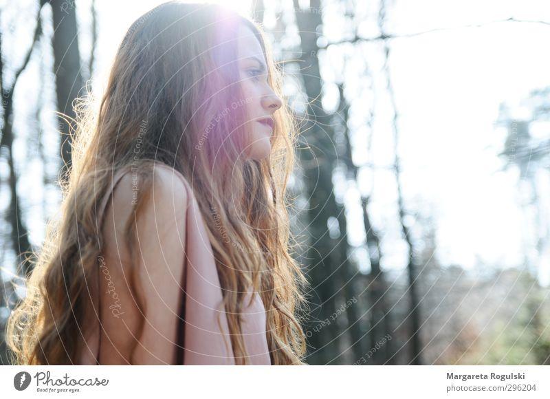 gegenlicht feminin Junge Frau Jugendliche Erwachsene 1 Mensch 18-30 Jahre Umwelt Natur Frühling Sommer Herbst Baum Wald träumen schön Zufriedenheit