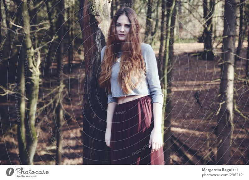 waldmitte feminin Junge Frau Jugendliche 1 Mensch 18-30 Jahre Erwachsene Umwelt Natur Landschaft Baum Sträucher Moos Wald trist braun grün Farbfoto