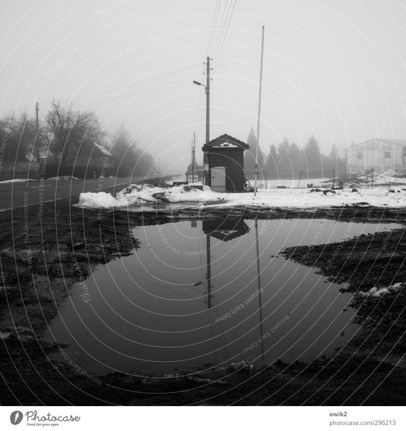 Schwarzadler Strommast Winter schlechtes Wetter Nebel Eis Frost Schnee Baum Lausitz Straße dunkel trashig trist Einsamkeit Endzeitstimmung Trauer Bushaltestelle