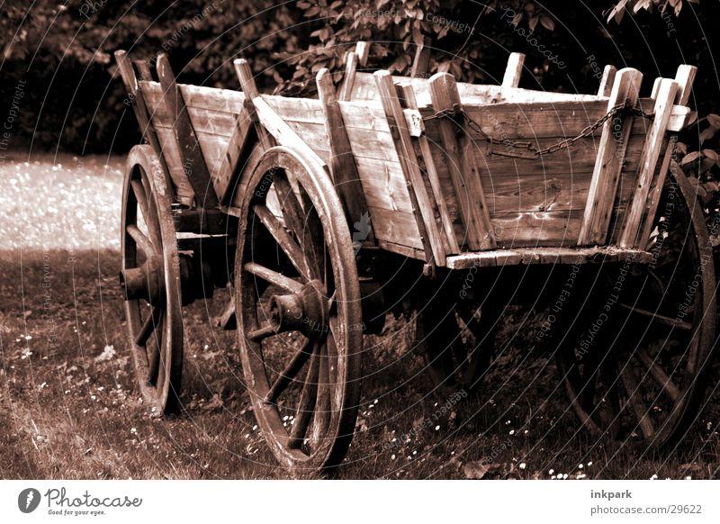 Aus alter Zeit alt Wiese Holz Wagen Karre Speichen