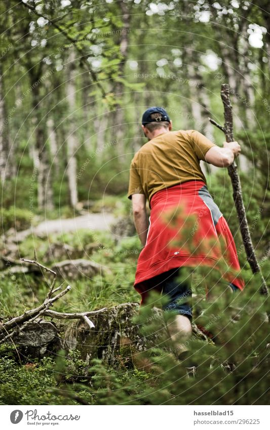 Norwegen Wandern Aktivurlaub Mensch Ferien & Urlaub & Reisen Jugendliche Mann Erholung ruhig Junger Mann 18-30 Jahre Ferne Wald Erwachsene Berge u. Gebirge