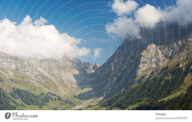 Wolkenkratzer Himmel Natur blau grün weiß Sommer Pflanze Baum Sonne Landschaft Wald Umwelt Ferne Berge u. Gebirge Wärme