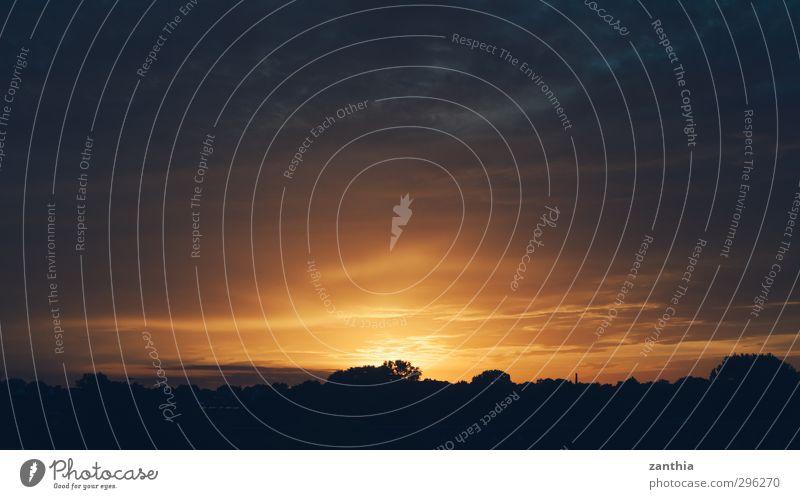 Sunset Natur Sonne Einsamkeit Wolken schwarz Ferne gelb Umwelt Senior Horizont Stimmung Deutschland orange gold Idylle Zukunft