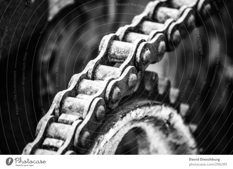 Mechanische Harmonie Bewegung Metall Zukunft Technik & Technologie Physik Zusammenhalt Dienstleistungsgewerbe Teamwork Kette Maschine Motor Qualität Fortschritt Reaktionen u. Effekte Zahnrad Bewegungsreaktion