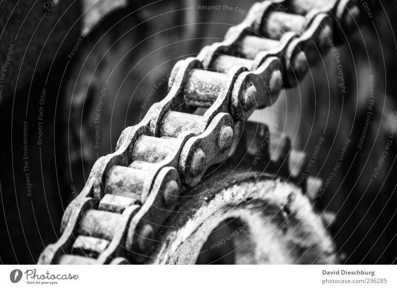 Mechanische Harmonie Maschine Motor Getriebe Technik & Technologie Fortschritt Zukunft Bewegung Qualität Dienstleistungsgewerbe Teamwork Zusammenhalt Kette