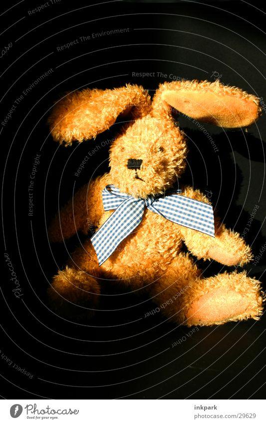 Der Hase ohne Namen Hase & Kaninchen Stofftiere Licht Halstuch Schatten Haare & Frisuren Akt :) Osterhase