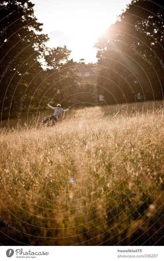 Sommerfeeling Mensch Kind Jugendliche Sonne Freude Erholung Erwachsene Liebe Junger Mann Wiese Freiheit 18-30 Jahre Glück springen