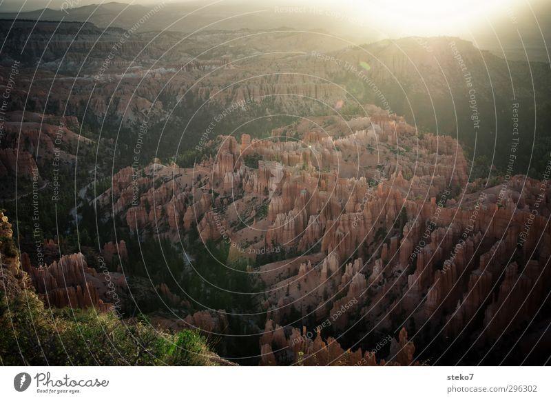 flüssiges Licht Natur Sonne Sonnenaufgang Sonnenuntergang Sonnenlicht Wald Berge u. Gebirge Schlucht braun orange Erholung Erwartung ruhig