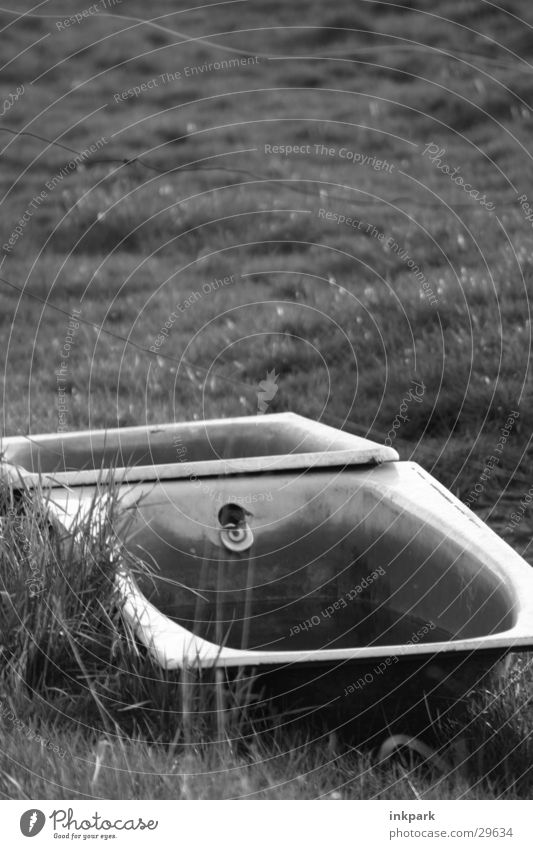 Relikt Badewanne obskur Rasen Weide Wasser alt verfaulen