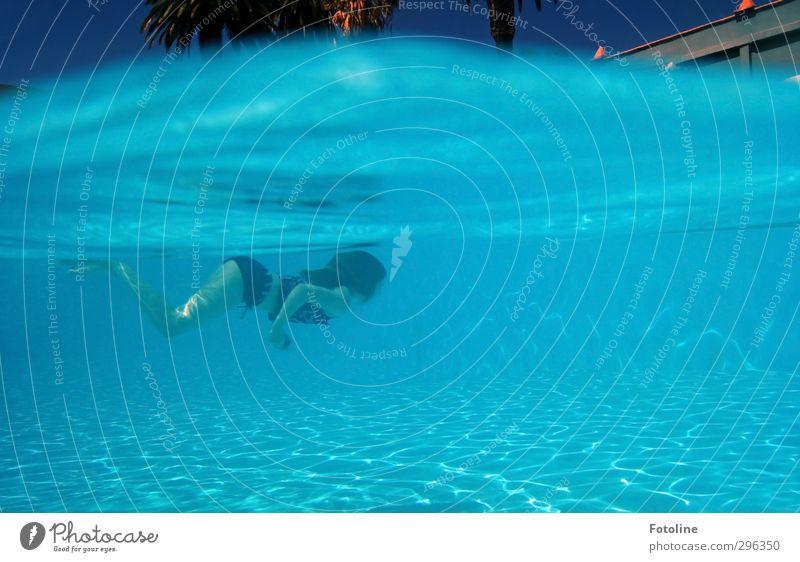 Freischwimmer Mensch feminin Kind Mädchen Kindheit Körper nass blau Meerjungfrau Nixe Schwimmsport tauchen Ferien & Urlaub & Reisen Farbfoto mehrfarbig