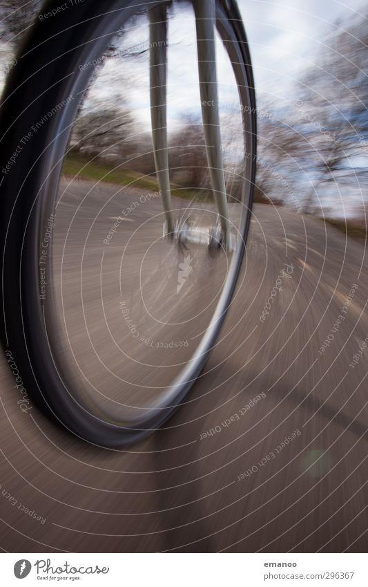 fast forward Natur Ferien & Urlaub & Reisen Freude Straße Sport Bewegung Wege & Pfade grau Fahrrad Freizeit & Hobby Verkehr Lifestyle Geschwindigkeit Ausflug