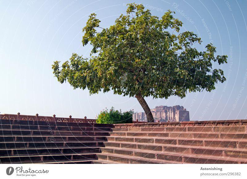 überdachte Frestung Himmel Natur blau grün Stadt Pflanze Baum rot Haus Wärme Frühling Architektur Gebäude Park Wetter Fassade