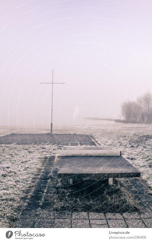 Tischtennis am Seepark Sportstätten Natur Landschaft Himmel Wolken Winter Nebel Pflanze Baum Gras Sträucher Grünpflanze Wildpflanze Seeufer Gelassenheit ruhig