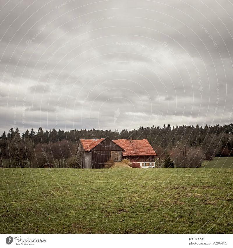 bis sich die balken biegen Natur alt Baum Einsamkeit Landschaft Wolken Haus Wald dunkel Berge u. Gebirge Wiese Gras grau Feld dreckig authentisch