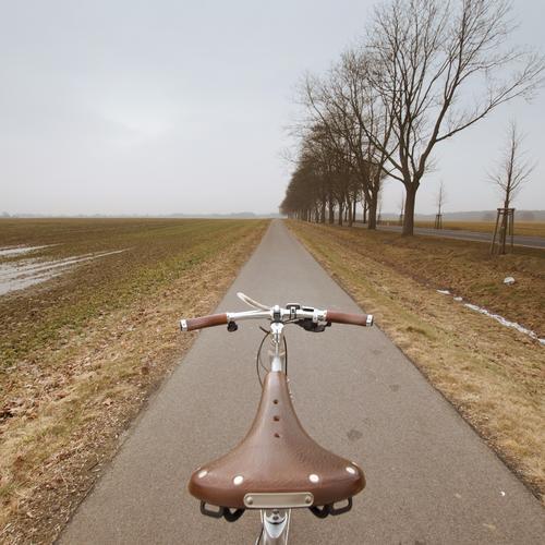 hätte, hätte, fahrradkette Lifestyle Freizeit & Hobby Umwelt Natur Landschaft Frühling Winter Klima Wetter Baum Feld Verkehr Verkehrswege Fahrradfahren Straße