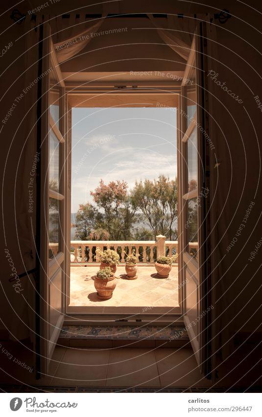 Sonnige Aussichten Himmel Sommer Schönes Wetter Pflanze Meer Haus Balkon Terrasse Fenster Ferien & Urlaub & Reisen Geländer Säule Fliesen u. Kacheln Tamarisken