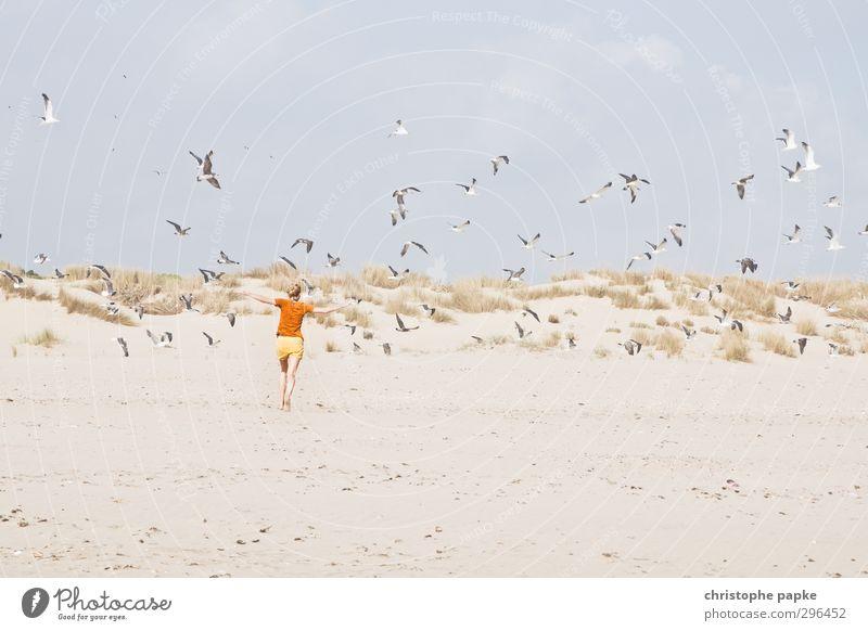 400 - und die Jagd geht weiter Ferien & Urlaub & Reisen Sommer Sommerurlaub Strand Junge Frau Jugendliche Erwachsene 1 Mensch 18-30 Jahre Küste Nordsee Tier