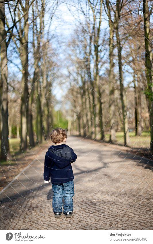 Der Weg ist lang zum Erwachsen werden Mensch Kind Pflanze Baum Freude Umwelt Gefühle Frühling Berlin Junge Park Freizeit & Hobby Kraft Kindheit laufen