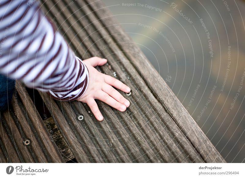 Schön vorsichtig sein Lifestyle Freizeit & Hobby Spielen Mensch Junge Kindheit Hand 1 1-3 Jahre Kleinkind Umwelt Wasser Frühling Garten Teich Stadtrand