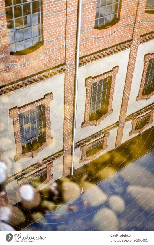 Erster Sonnentag - erste Spiegelung Urelemente Frühling Teich Stadtrand Menschenleer Haus Traumhaus Industrieanlage Bauwerk Gebäude Architektur Fassade