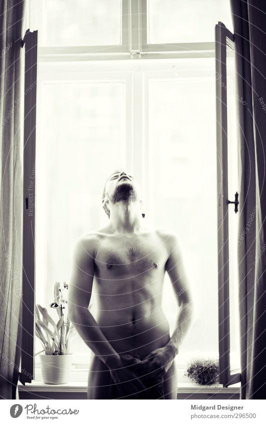 Am Fenster II Mensch maskulin Körper Bauch 1 18-30 Jahre Jugendliche Erwachsene Denken Fitness Sex ästhetisch nackt natürlich Erotik Kraft Begierde Lust