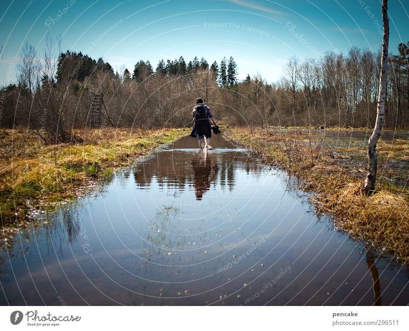 moor and moor Natur Wasser Baum Landschaft Erholung Gras Frühling See gehen Erde wandern Schönes Wetter Idylle Urelemente genießen Wolkenloser Himmel