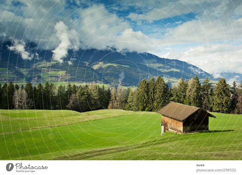 Schaun mer mal Ferne Sommer Berge u. Gebirge Haus Umwelt Natur Landschaft Urelemente Himmel Wolken Klima Schönes Wetter Baum Wiese Wald Alpen Hütte grün