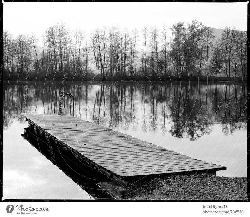 Landschaft Seeufer Erholung ruhig Sommer Schwimmen & Baden Kunst Umwelt Natur Wasser Himmel Wolkenloser Himmel Küste Flussufer Strand Bucht Gefühle Stimmung