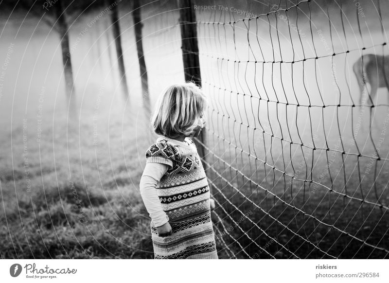 auf der anderen seite des zauns ii Mensch Kind Mädchen Tier ruhig Umwelt feminin Herbst Frühling Denken träumen Kindheit Feld Kraft Nebel warten