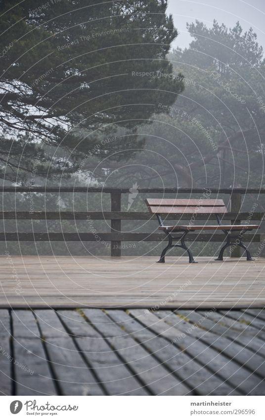 Einsamer Platz Natur schlechtes Wetter atmen Erholung sitzen warten kalt trist braun grau grün ruhig Einsamkeit Zeit Dunst Holz Bank terasse Gedeckte Farben