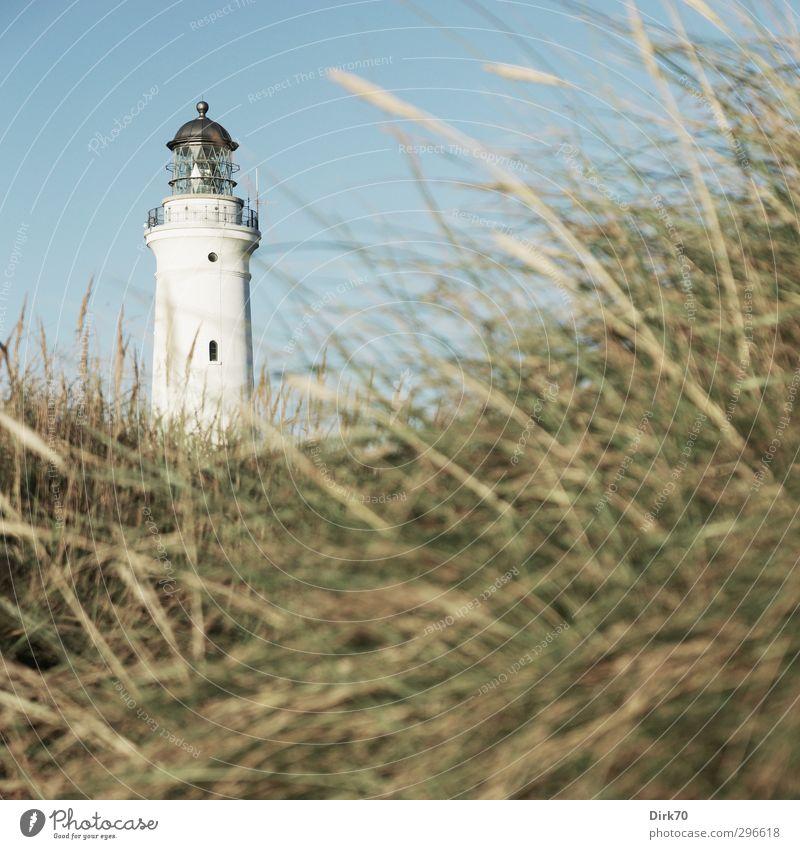 Leuchtturm von Hirtshals, Nordjütland blau Ferien & Urlaub & Reisen grün weiß Sommer schwarz Ferne Gras Küste Stein Metall Glas leuchten Schönes Wetter Turm