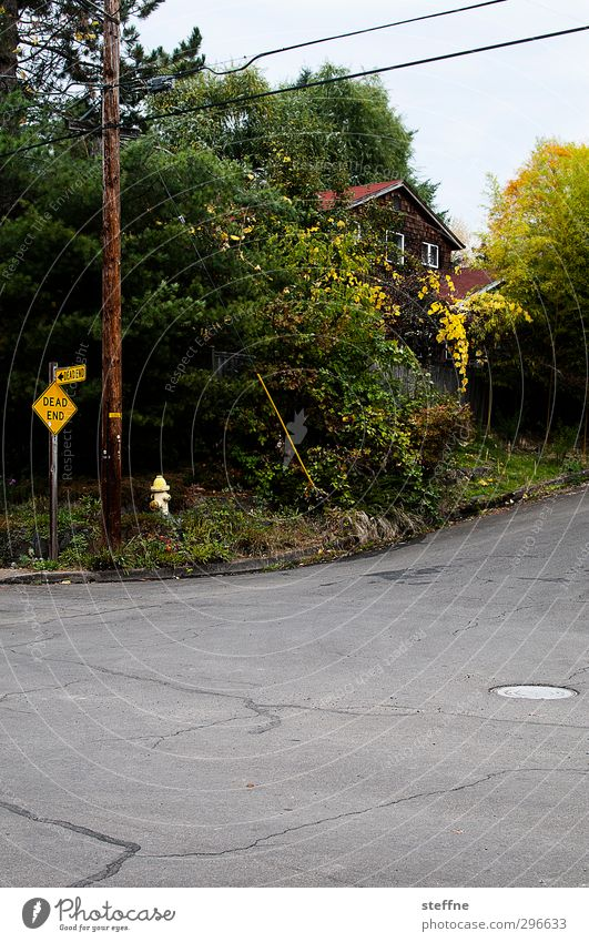 DEAD Stadt Straße Idylle USA Asphalt Straßenkreuzung Kleinstadt Stadtrand Verkehrsschild Einfamilienhaus Verkehrszeichen Sackgasse Oregon