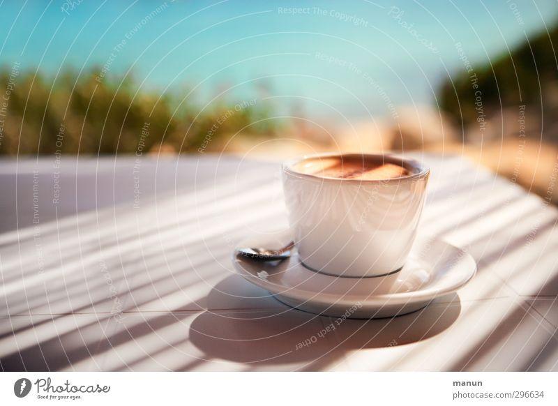 Strandkaffee Natur Ferien & Urlaub & Reisen Sommer Freude ruhig Erholung Wärme Küste Gesunde Ernährung Schönes Wetter Lifestyle Getränk Pause genießen Kaffee Lebensfreude