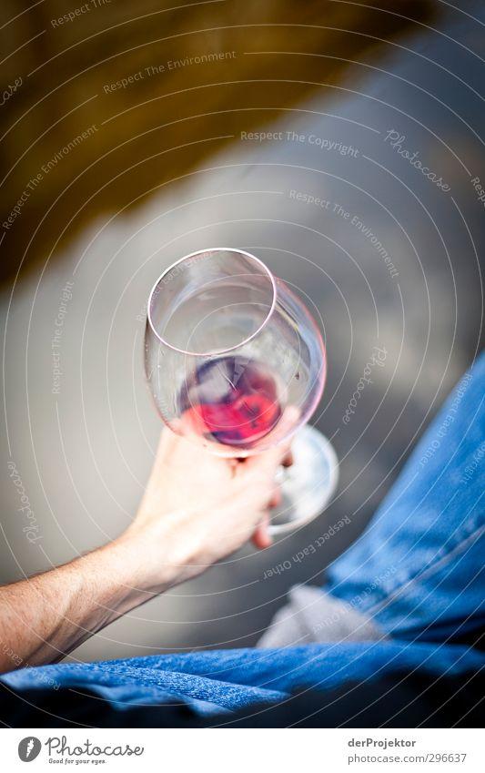Weinprobe am See Getränk trinken Alkohol Mensch maskulin Erwachsene Hand 1 Umwelt Wasser Frühling Garten Park Teich atmen wählen träumen Gefühle Stimmung Freude