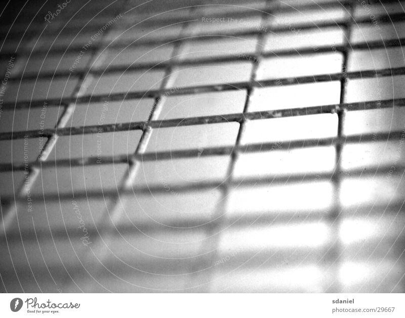 zaun s/w Zaun Draht Tiefenschärfe Industrie Schwarzweißfoto Perspektive Verlauf Gitter Netz