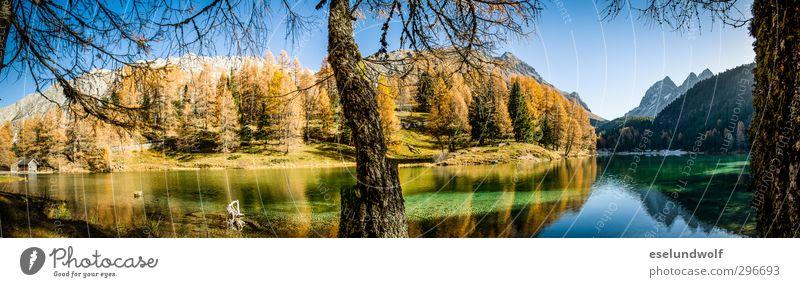 Alpensee im Herbst Umwelt Natur Berge u. Gebirge Vergänglichkeit Engadin Gebirgssee herbstlich Herbstfärbung Farbfoto Außenaufnahme Menschenleer