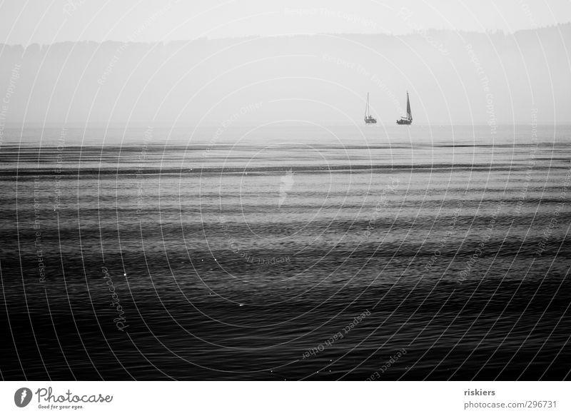sail away ii Segeln Umwelt Wasser Frühling Herbst Nebel See Bodensee glänzend leuchten Ferne frei Unendlichkeit Gefühle Stimmung Zufriedenheit Lebensfreude
