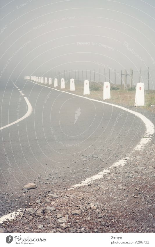 Road To Nowhere Menschenleer Straße alt bedrohlich Unendlichkeit gruselig grau weiß Nebel Markierungslinie Autofahren Fahrbahnmarkierung Asphalt falsch Unfall